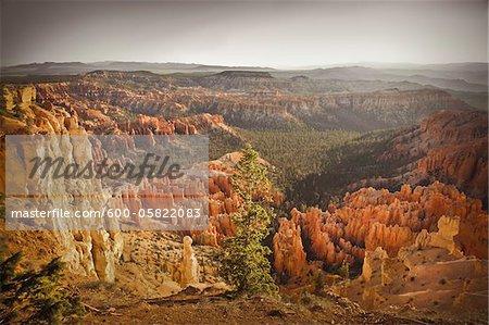 Bryce Amphitheater, Bryce Canyon National Park, Utah, USA