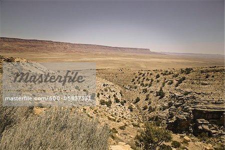 Vue panoramique de ALT 89, Arizona, USA