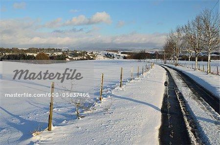 Road through Winter Landscape near Villingen-Schwenningen, Black Forest, Baden-Wurttemberg, Germany