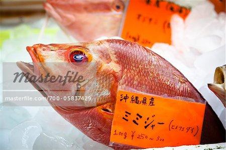 Fish at Makisha Public Market, Naha, Okinawa, Japan