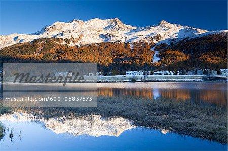 Piz Corvatsch Berninagruppe Sils Im Engadin reflektierend im Silsersee, Engadin, Schweiz
