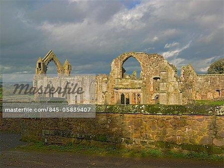 Abbaye de Haugmond. Vue sur l'ensemble du site.