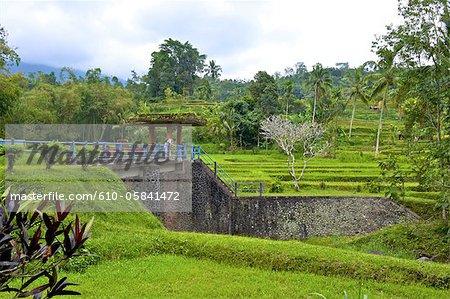 Indonesia, Bali, irrigation of the rice fields, dam