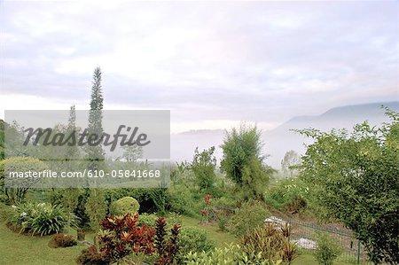 Indonesia, Bali, Bedugul, garden overhaning Bratan lake