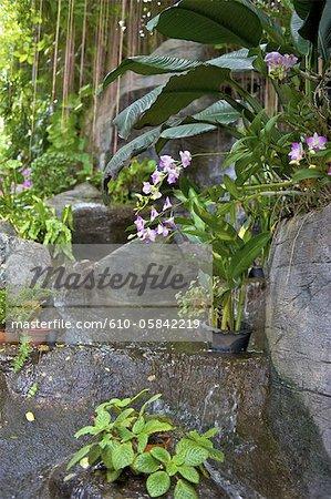 Thailand, Bangkok, Wat Saket, garden