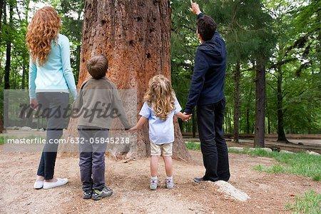 Famille debout ensemble à la base de l'arbre, vue arrière