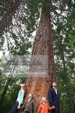 Famille stanidng ensemble à la base du grand arbre, main dans la main