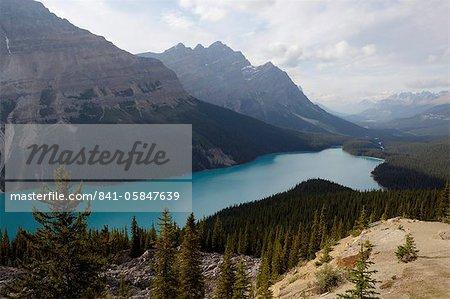 Les couleurs turquoise magnifique de Peyto Lake, Banff National Park, patrimoine mondial de l'UNESCO, Alberta, Rocky Mountains, Canada, Amérique du Nord