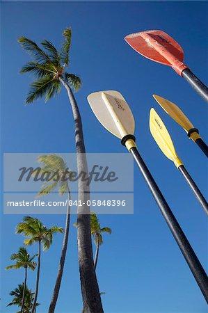 Palmiers et pagaies, plage de Bavaro, Punta Cana, République dominicaine, Antilles, Caraïbes, Amérique centrale