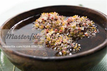 Flottant de fleurs dans un petit plat, gros plan