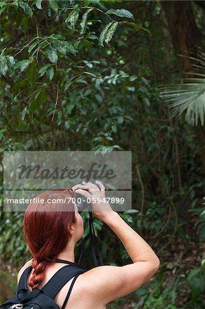 Frau suchen durch Ferngläser im Wald, Rio De Janeiro, Brasilien