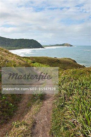 Sentier le long de collines côtières, Ilha do Mel, Parana, Brésil
