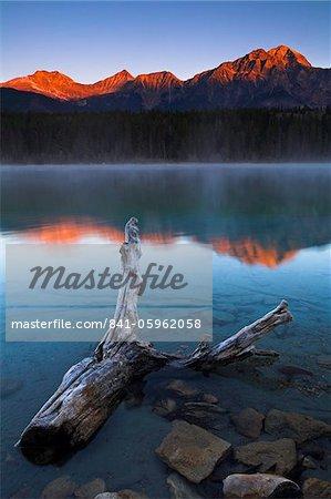 Dépoli bois flottant dans les eaux peu profondes du lac Patricia dès l'aube, Parc National Jasper, patrimoine mondial de l'UNESCO, Alberta, Rocky Mountains, Canada, Amérique du Nord