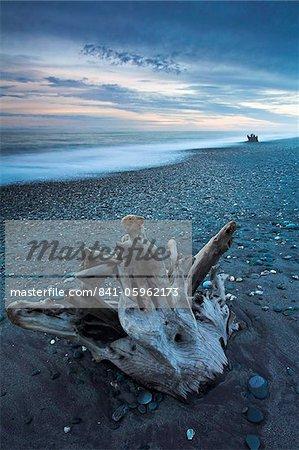 Ancienne bois flotté sur Gillespies Beach, côte ouest, île du Sud, Nouvelle-Zélande, Pacifique