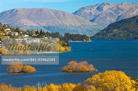 Automne splendeur à côté du lac Wakatipu, Queenstown, île du Sud, Nouvelle-Zélande, Pacifique