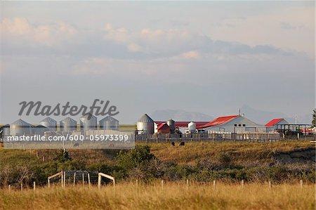 Farm Buildings, Mountains in Distance, Utopia Farm, Pincher Creek, Alberta, Canada