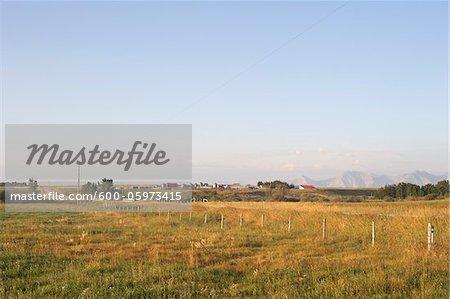 Prairie Farm and Fields, Rocky Mountains in Distance, Utopia Farm, Pincher Creek, Alberta, Canada