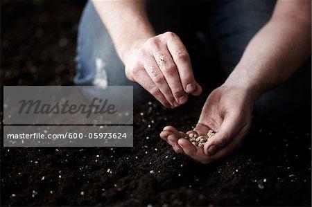 Man Planting Nasturtium Seeds in Garden