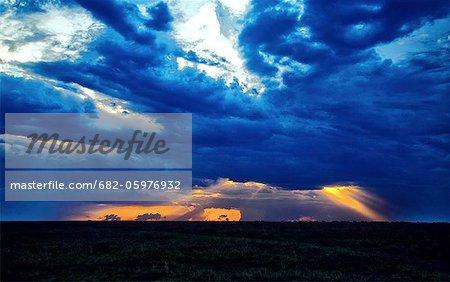 Sunset over savannah, Maasai Mara National Reserve, Kenya