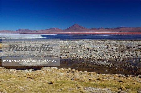 View of the fiery red Laguna Colorada, Los Lipez, South-western Bolivia, South America
