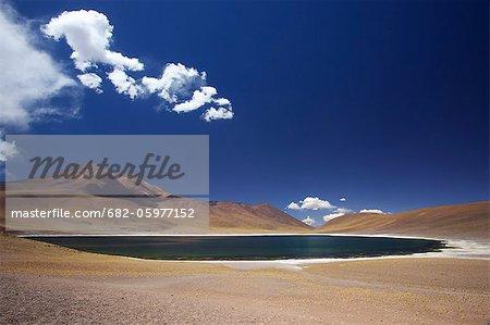 Laguna Miniques of the Atacama Desert, Reserva Nacional Los Flamencos, Norte Grande, Chile, South America