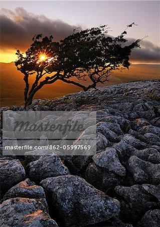 Europa, England, North Yorkshire, Ingleton, Twistleton Narben