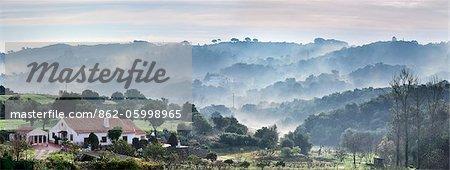 Arrabida Naturpark im Nebel. Palmela, Portugal
