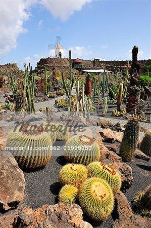 Jardin de Cactus (Cesar Manrique). Lanzarote, Canary islands