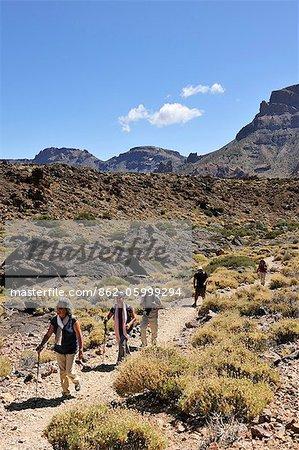 Teide National Park (Parque Nacional del Teide) est l'un des parcs nationaux plus visités dans le monde. Il est centré sur le volcan Teide, 3718m haute, la plus haute montagne d'Espagne. Tenerife, îles Canaries
