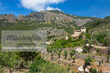 Finca in der Nähe von Soller, Mallorca, Balearen, Spanien