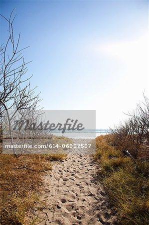 Chemin de sable à la plage, Playa Grande, Santa Cruz, Costa Rica