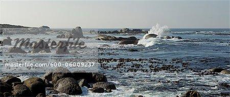 Bord de mer et l'océan Indien, l'Afrique du Sud