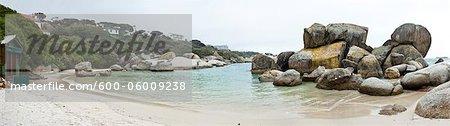 Boulders Beach, péninsule du Cap, Cap-occidental, Province du Cap, Afrique du Sud