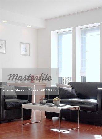 Modern Coffee Table And Sofa, Living Room