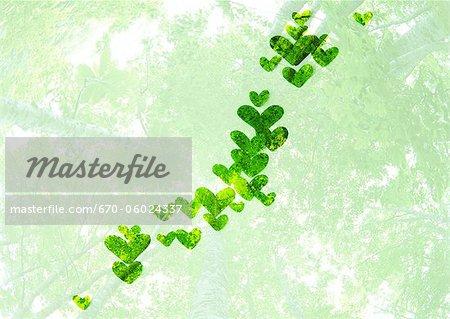 Îles japonaises de feuilles cordiformes (image de l'écologie)