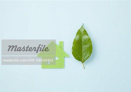 Leaf et la maison Eco