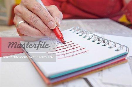 Frau, die die Liste in kleine notebook