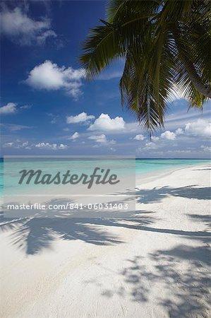 Tropischer Strand, Malediven, Indischer Ozean, Asien