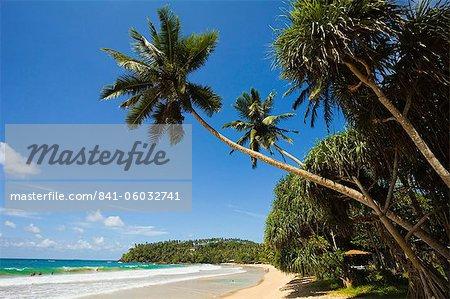 Palmen und West Point von der Südküste Wale beobachten Surf Beach in Mirissa, in der Nähe von Matara, Südprovinz in Sri Lanka, Asien