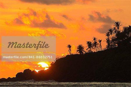 Sunset and palm trees on the western point of the south coast surf beach at Mirissa, near Matara, Southern Province, Sri Lanka, Asia