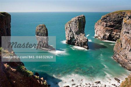 Der Elegug Sea Stacks, Pembrokeshire, Wales, Vereinigtes Königreich, Europa