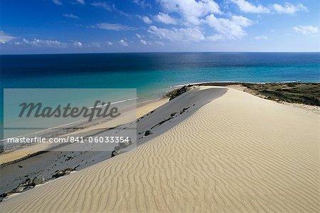 Sand dunes, Playa de Sotavento de Jandia, Fuerteventura, Canary Islands, Spain, Atlantic, Europe
