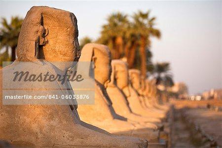 Luxor-Tempel, Luxor, Theben, UNESCO World Heritage Site, Ägypten, Nordafrika, Afrika