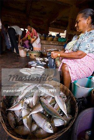 Woman selling fish, Mapusa Market, Goa, India, Asia