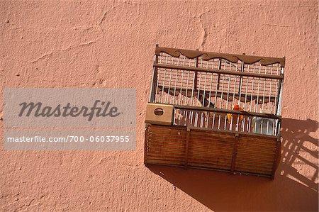 Bird Cage, Marrakech, Morocco