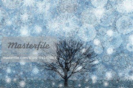 Arbre solitaire hiver pris dans une tempête de neige