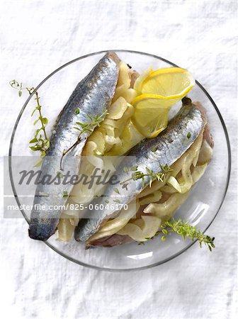 Sardines marinées au fenouil