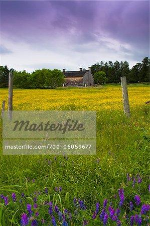 Grange, Sutton, cantons de l'est, Québec, Canada