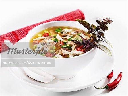 Würzige Ente-Suppe