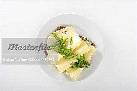 Une tranche de pain garnie de fromage et oignons de printemps